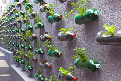 Genius Bottle Wall - Upcycle That